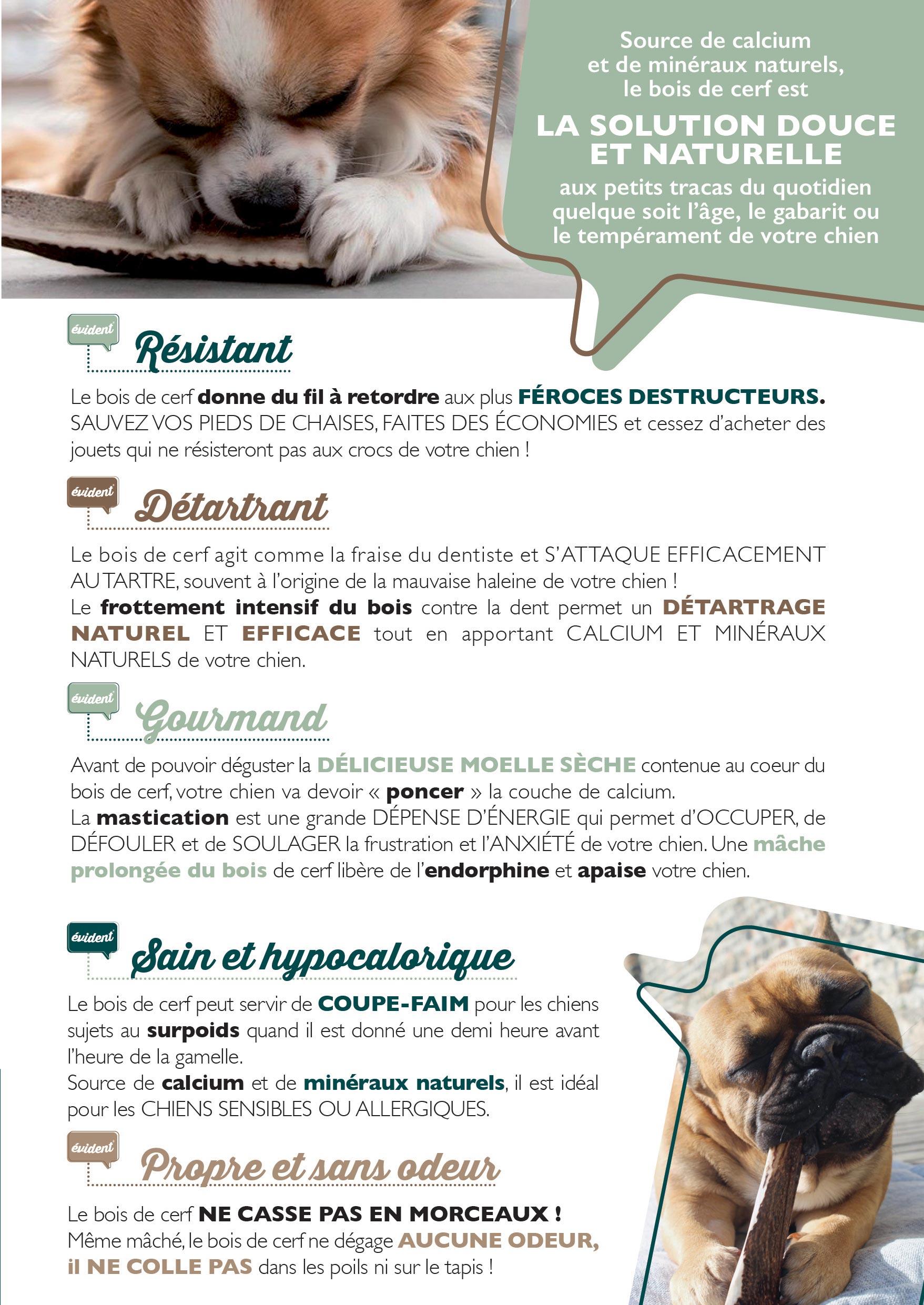 avantages bois de cerf